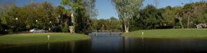 Bridge across pond